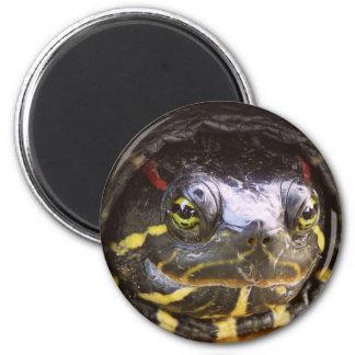 Red Eared Slider Turtle Head Fridge Magnets