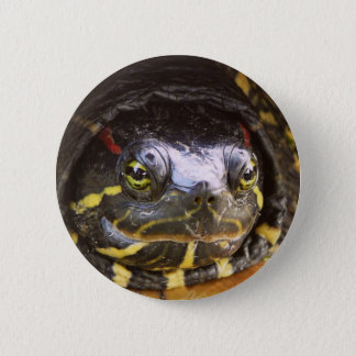 Red Eared Slider Turtle Head Pinback Button