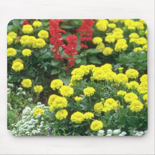Red Eastern Flowers In Bloom flowers Mouse Pads
