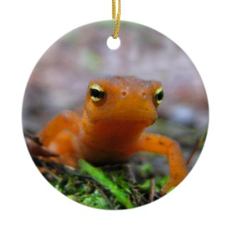Red Eft Christmas Ornament ornament