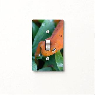 Red Eft Orange Salamander Nature Light Switch Cover