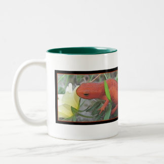 Red Eft Two-Tone Coffee Mug