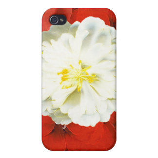 Red Elegance iPhone 4/4S Case