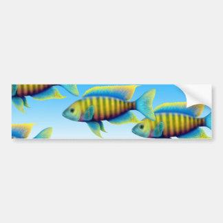 Red Empress Peacock Fish Bumper Sticker