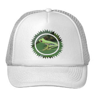 Red Eye Green Tree Frog Baseball Cap Trucker Hat