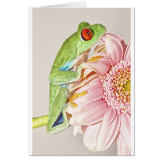 Red Eye Tree Frog Greeting Card