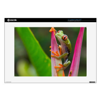 """Red-eye tree frog, Costa Rica 2 15"""" Laptop Decals"""