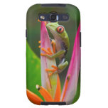 Red-eye tree frog, Costa Rica 2 Samsung Galaxy SIII Cases