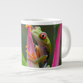 Red-eye tree frog, Costa Rica 2 Large Coffee Mug