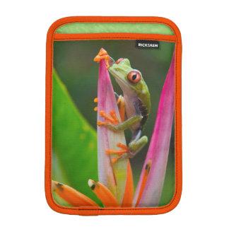 Red-eye tree frog, Costa Rica 2 Sleeve For iPad Mini
