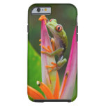 Red-eye tree frog, Costa Rica 2 Tough iPhone 6 Case