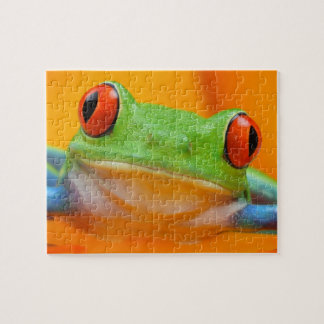 Red-eye Tree Frog Puzzle