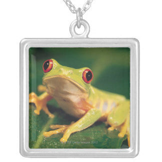 Red eye tree frog silver plated necklace