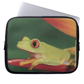 Red eye tree frog sitting on flower computer sleeve