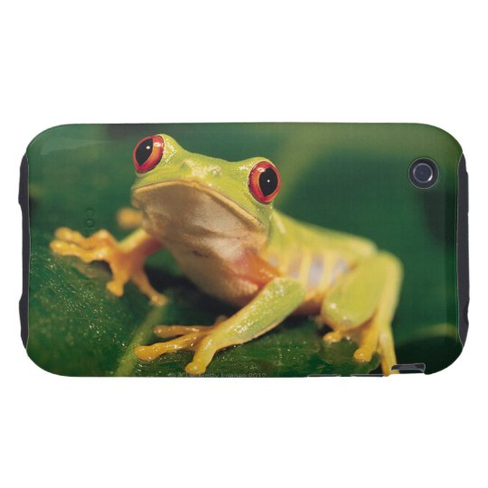 Red eye tree frog tough iPhone 3 cover