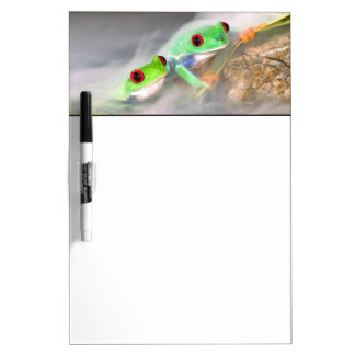 Red Eye Treefrog in the mist, Agalychinis 2 Dry Erase Board