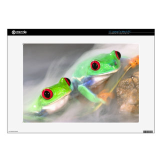 Red Eye Treefrog in the mist, Agalychinis 2 Laptop Decal