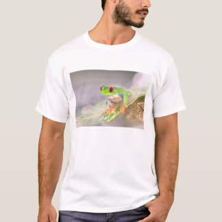 Red Eye Treefrog in the mist, Agalychinis T-Shirt