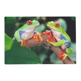 Red Eye Treefrog Pair, Agalychinis callidryas, Placemat