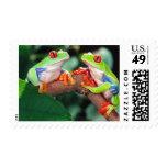 Red Eye Treefrog Pair, Agalychinis callidryas, Postage Stamps