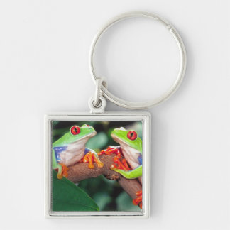 Red Eye Treefrog Pair, Agalychinis callidryas, Silver-Colored Square Keychain