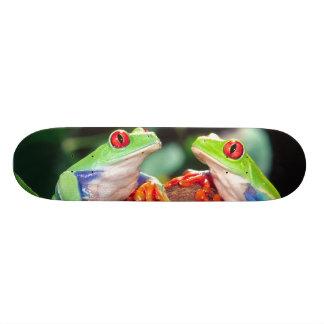 Red Eye Treefrog Pair, Agalychinis callidryas, Skateboard Deck