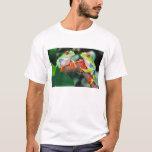 Red Eye Treefrog Pair, Agalychinis callidryas, T-Shirt