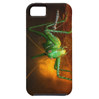 Red Eyed Devil iPhone 5 Covers