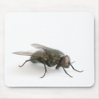 Red Eyed Fly Mousepad