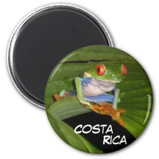 Red Eyed Gaudí Frog Customizable Magnet