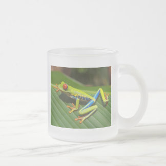 Red Eyed Green Tree Frog Frosted Glass Coffee Mug