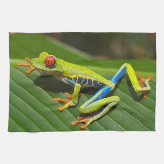 Red Eyed Green Tree Frog Hand Towels