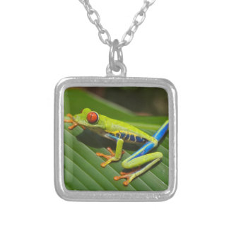 Red Eyed Green Tree Frog Necklaces