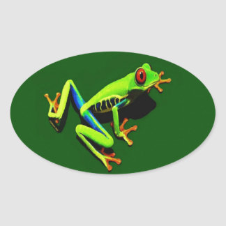 Red-Eyed Green Tree Frog Stickers