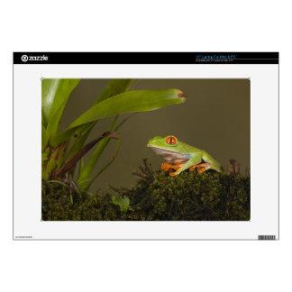"""Red-eyed Leaf Frog, AKA Red-eyed Tree frog Skin For 15"""" Laptop"""