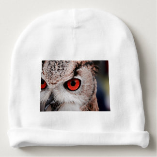 Red-Eyed Owl Baby Beanie