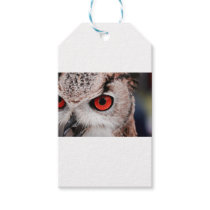 Red-Eyed Owl Gift Tags
