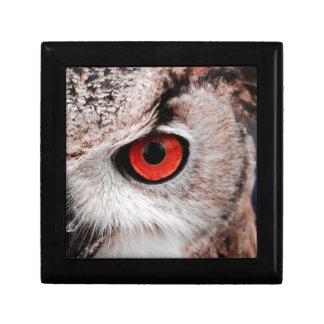 Red-Eyed Owl Keepsake Box