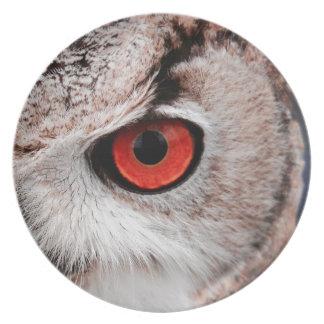 Red-Eyed Owl Melamine Plate