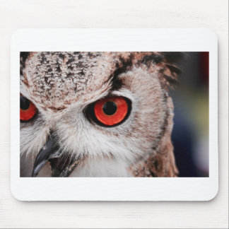 Red-Eyed Owl Mouse Pad
