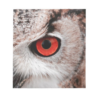 Red-Eyed Owl Notepad