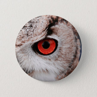 Red-Eyed Owl Pinback Button
