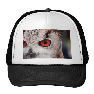 Red-Eyed Owl Trucker Hat