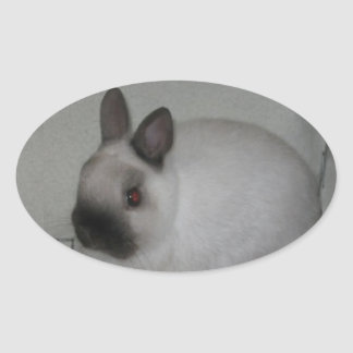 Red Eyed Rabbit Oval Sticker
