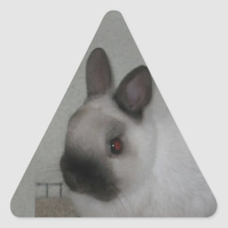 Red Eyed Rabbit Triangle Sticker