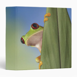 Red Eyed Tre Frog Peeking From Behind a Leaf 3 Ring Binder