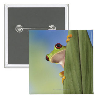 Red Eyed Tre Frog Peeking From Behind a Leaf Button