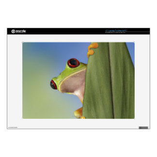 "Red Eyed Tre Frog Peeking From Behind a Leaf Decals For 15"" Laptops"