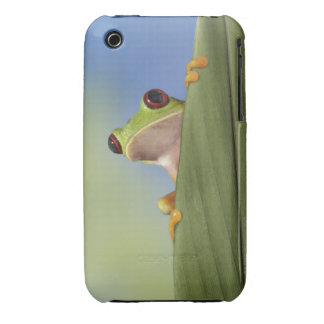 Red Eyed Tre Frog Peeking From Behind a Leaf iPhone 3 Case