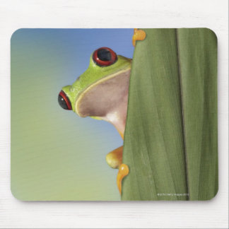 Red Eyed Tre Frog Peeking From Behind a Leaf Mouse Pad